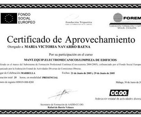Certificado de mantenimiento de equipos electromecanicos