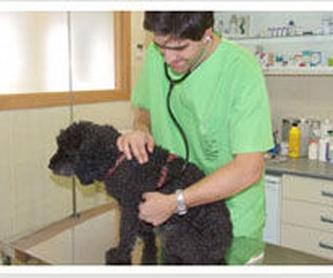 Hospitalización: Servicios de JESUS GARCIA CORONADO