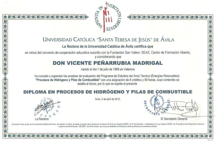 TECNICO ESPECIALISTA EN PROCESOS DE HIDROGENO Y PILAS DE COMBUSTIBLE