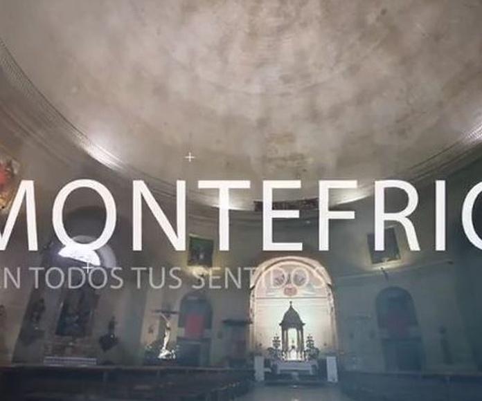 Visita Montefrío
