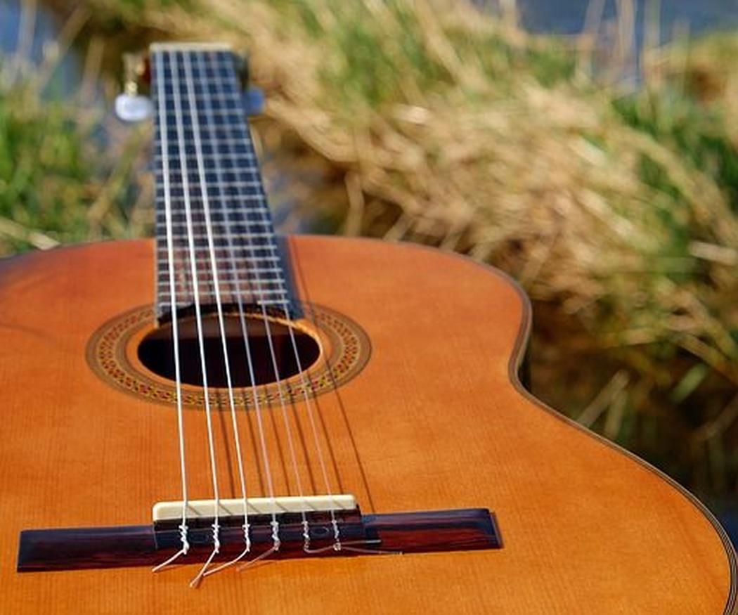 La variedad musical dentro del estilo mariachi
