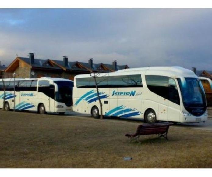 Servicio de transporte: Servicios de Scipon Bus