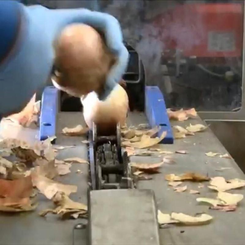 Peladora de cebollas:  de MAQUIMUR