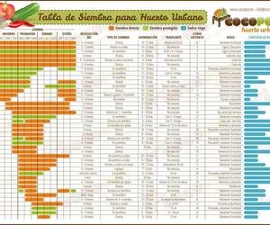 *huertos urbanos en Getafe|Huertos Azor
