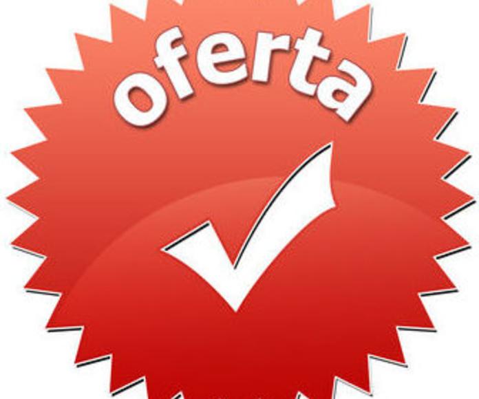 ¡PRECIOS ANTICRISIS!: Servicios de Pintocar