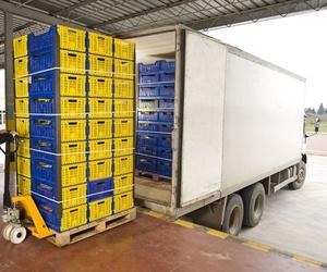 Transportes por carretera de productos perecederos en Palencia