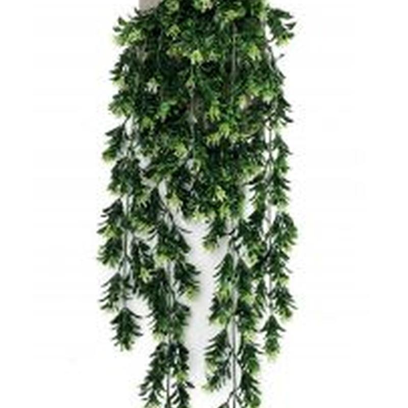 Planta colgante 419275: ¿Qué hacemos? de Ches Pa, S.L.
