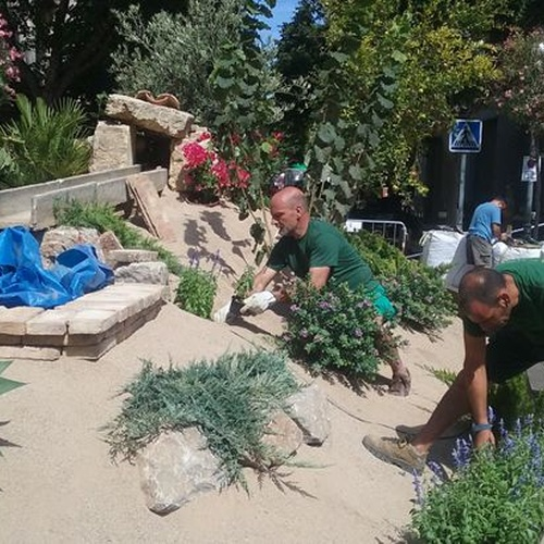 Encuentra tu jardinero profesional en Tarragona