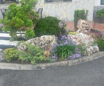 Tala de Árboles de Gran Porte: Servicios de Jardinería IGLE-MAN