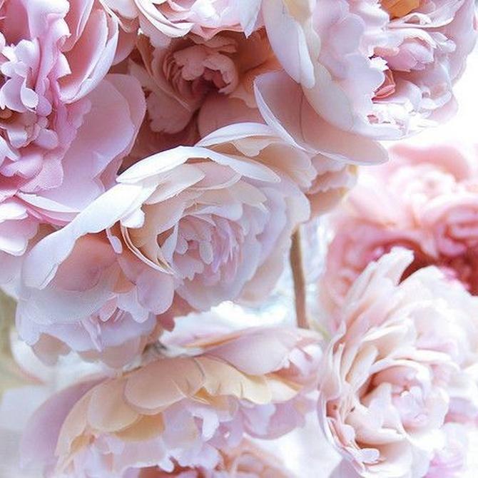 Consejos para elegir la decoración floral de tu boda