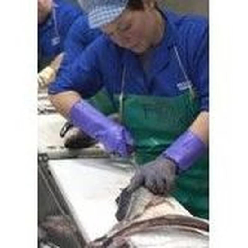 Mayoristas: Productos de Whitelink Seafood Limited