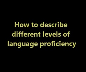 Serie Divulgación Vídeo 10. (C) Canadian Linguist: What are the differences between language proficiency levels?