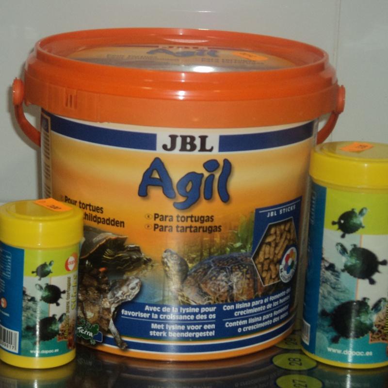 Alimentos tortugas: Servicios de Clínica Veterinaria Rocafort