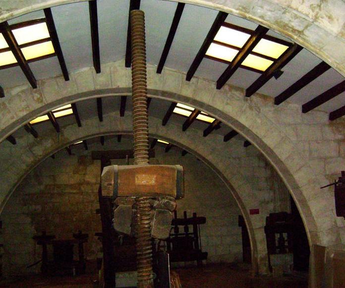 Museu de les Cultures del Vi de Catalunya. Vilafranca del Penedès (Barcelona)