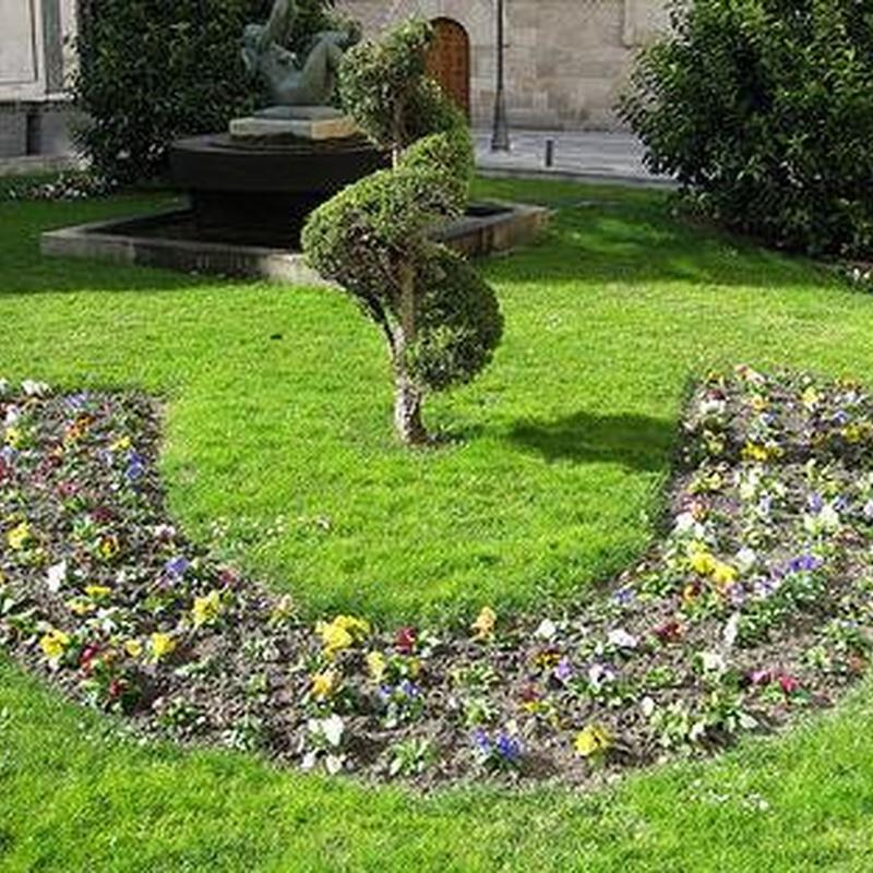 Jardines: Productos y Servicios de Jardines Patxi Lorategiak