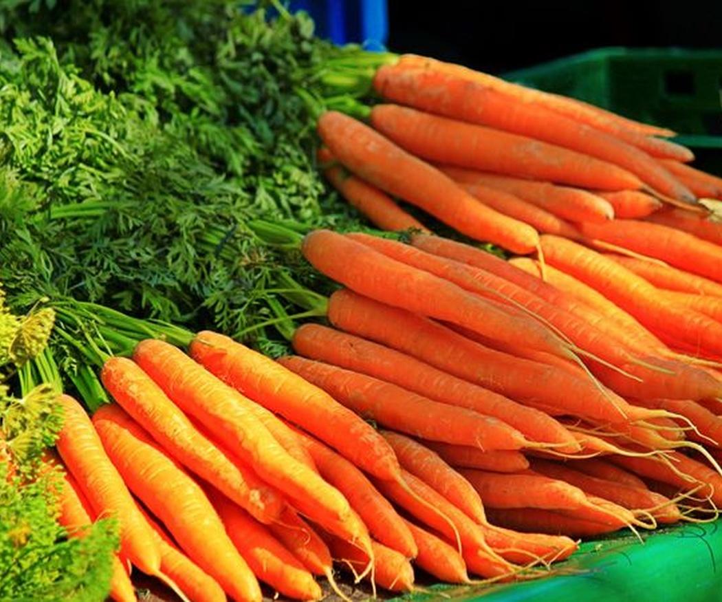 Zanahorias contra el cáncer