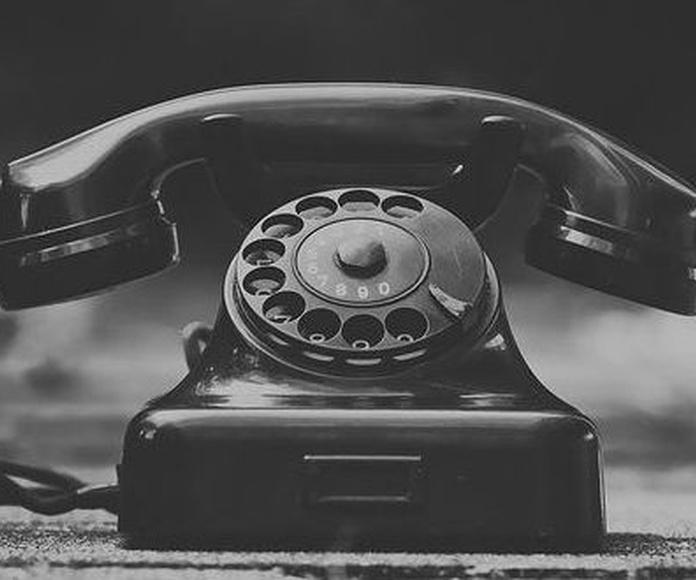 Teléfonos de Mudanzas Gamo.