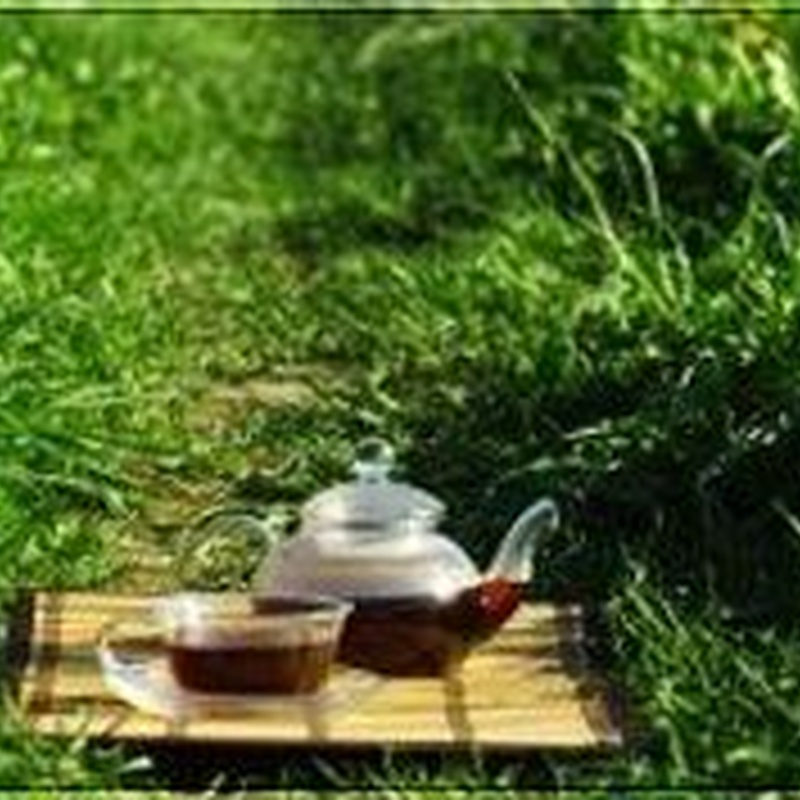 Plantas medicinales: Productos de Herbolario San Bernardo122