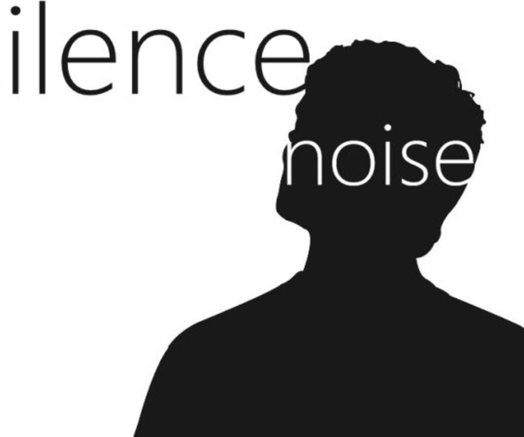 """Ordenanza municipal sobre ruidos en """"La Zona"""""""