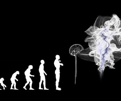 Evolución: Mitos y conceptos erróneos