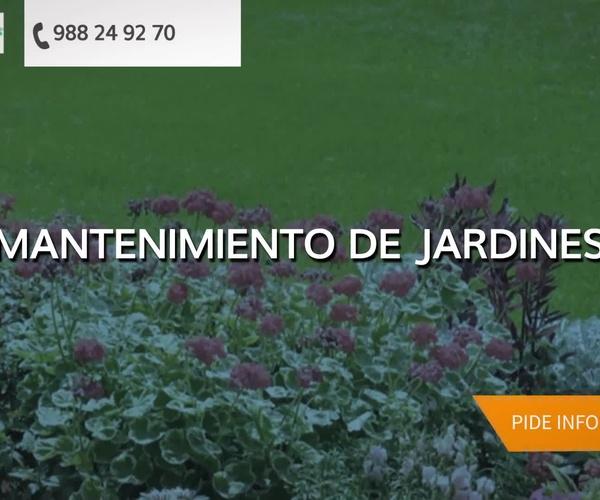 Viveros de jardinería en Ourense | Viveros Mende, S.L.