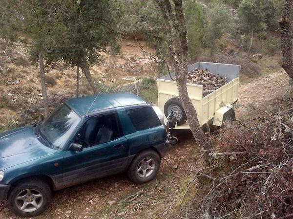 Poda, tala y venta y distribución de leña a domicilio en Segovia