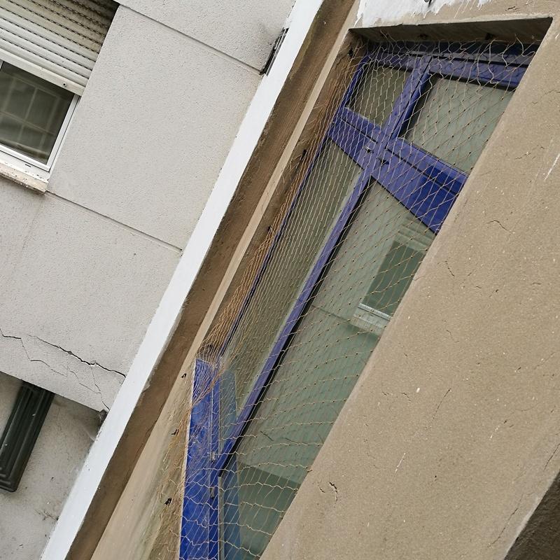 Colocación de redes anti aves: Servicios de FACHADAS ARLBERG