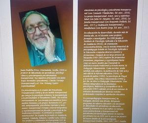 La psicoterapia en sus libros