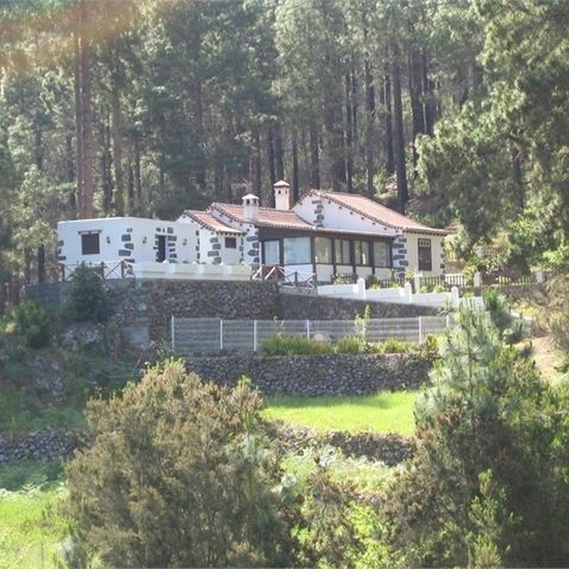 Icod de los Vinos, Camino Montiel - Ref.- CF0488: Inmuebles de Inmobiliaria JP