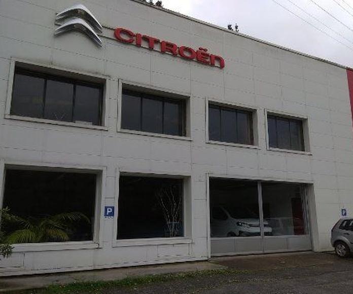 Vehículos nuevos: Servicios de Garaje Txindoki, S.L.
