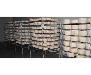 La Yerbera, elaboración de queso de cabra de sabor intenso y suave