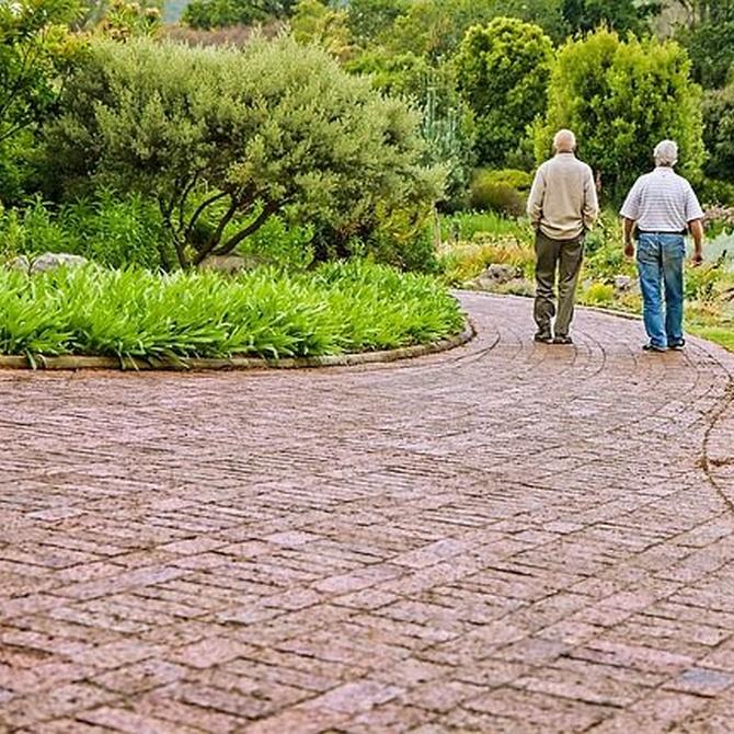 La importancia de la actividad física en la tercera edad