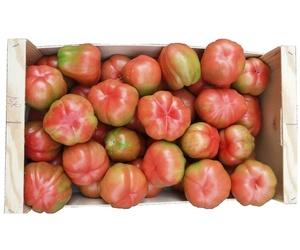 Tomates de huerto