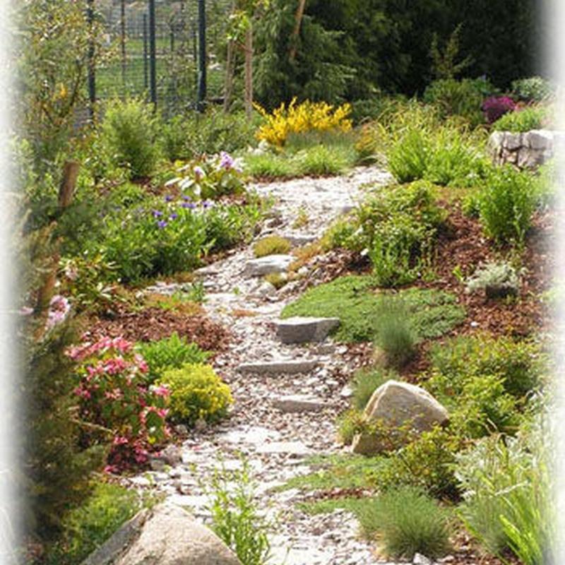 Construcción de zonas verdes: servicios de Plante Verde
