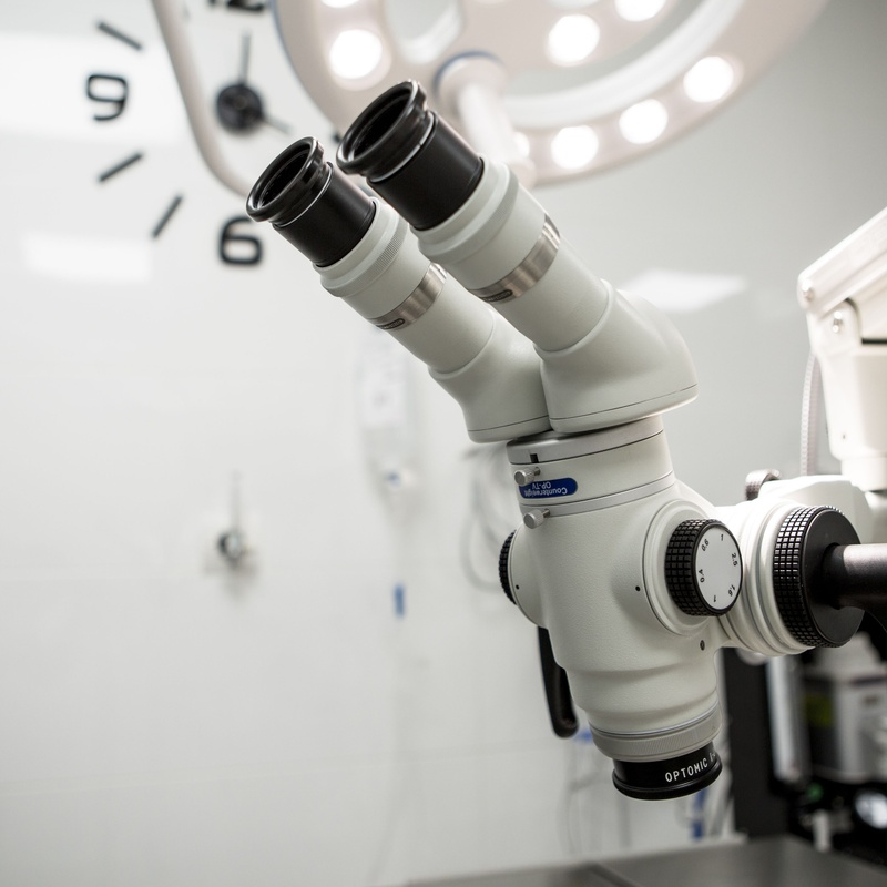 Medicina interna: Servicios Veterinarios de Hospital Veterinario Ciudad Real