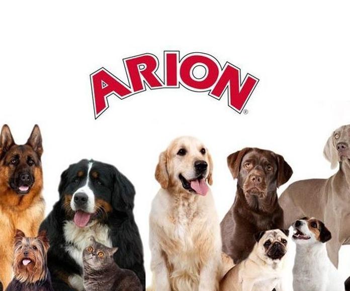Distribuidores oficiales de piensos Arion en Burgos