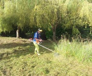 Limpieza de jardines en Valladolid