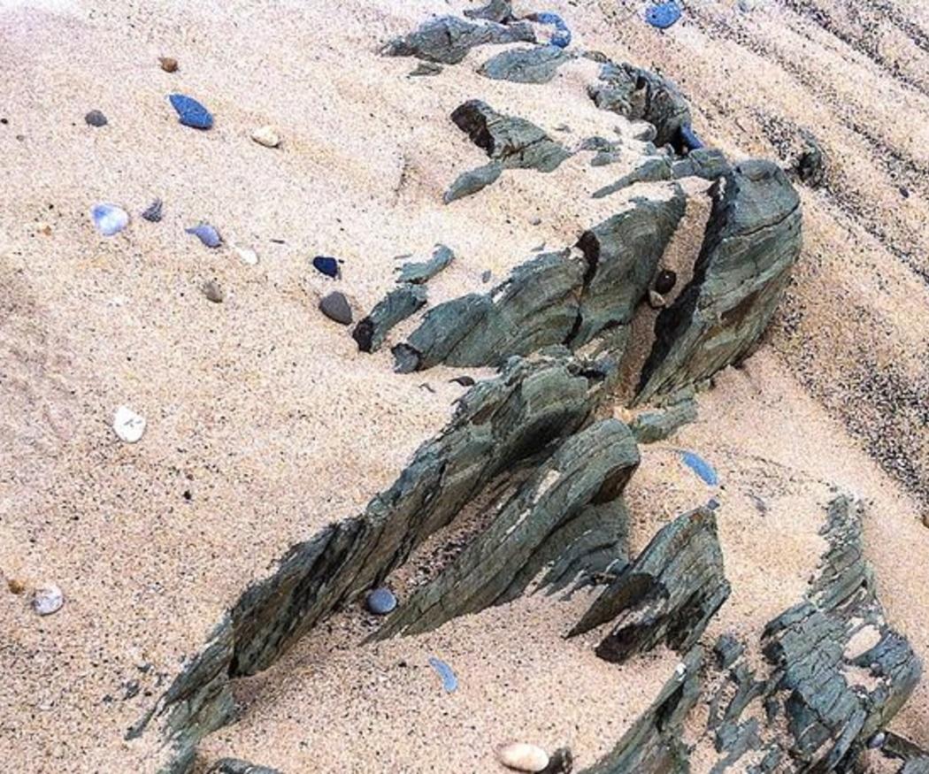 Pasos para un proyecto de regeneración de playas