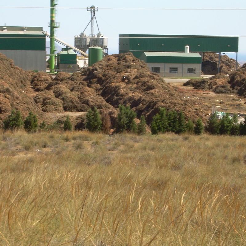 Vertedero de residuos vegetales en Almería