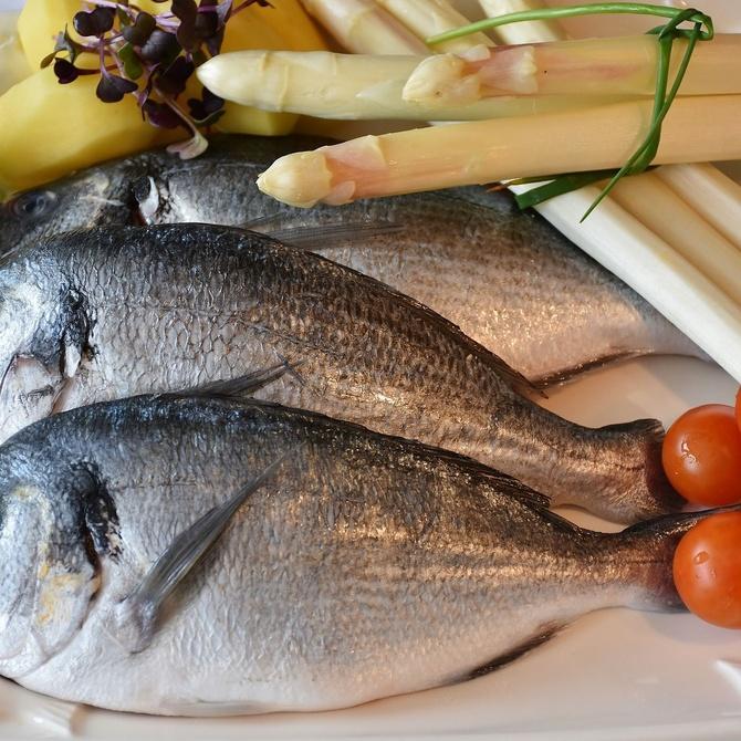 ¿Por qué congelar el pescado y el marisco?