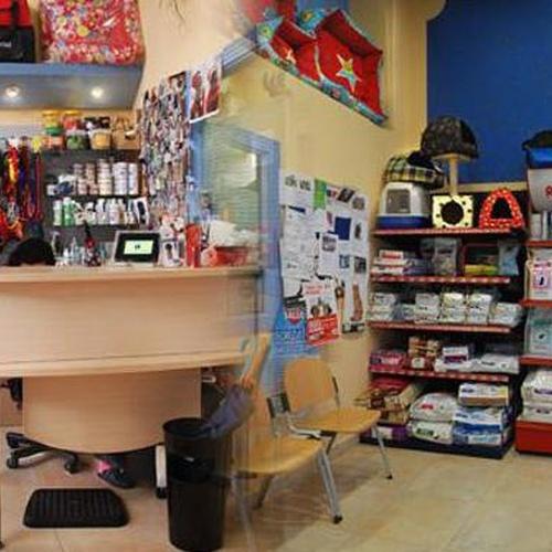 Nuestra recepción y paqueña tienda