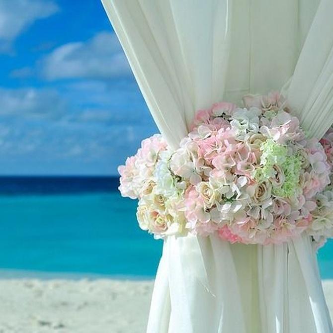 Los diferentes tipos de materiales para carpas de boda