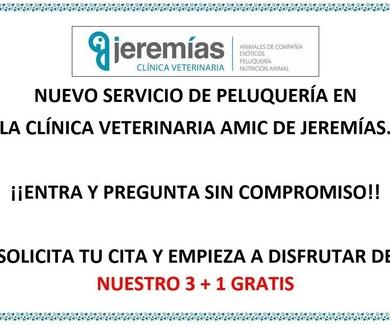 NUEVO SERVICIO DE PELUQUERÍA CANINA Y FELINA EN LA CLÍNICA VETERINARIA AMIC DE JEREMÍAS.