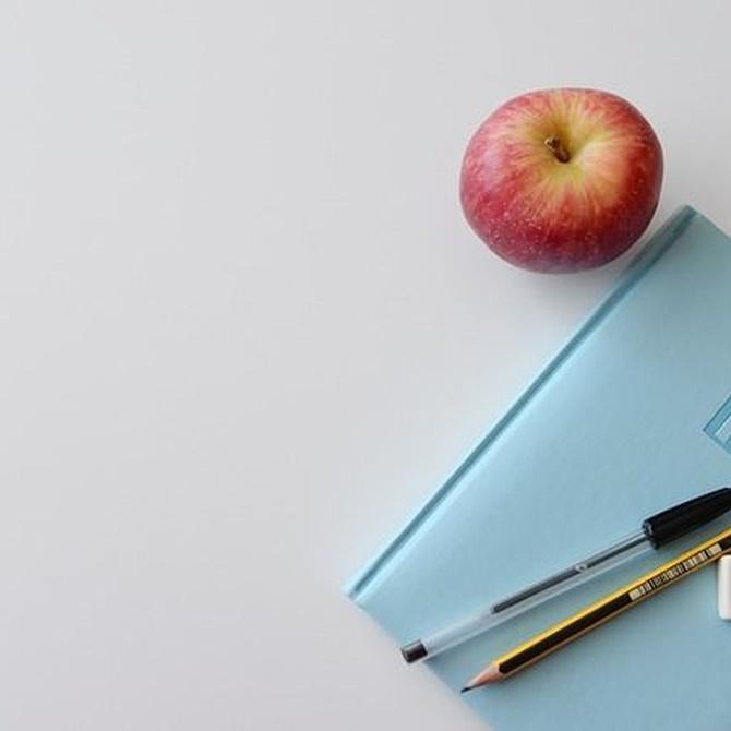 ¿Qué puede hacer el coworking por tu negocio?
