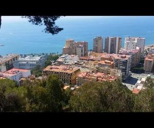 Rocio Tapas y Sushi Málaga