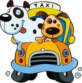 taxi amigo de los animales