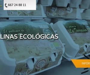 Huevos ecológicos en Martorell | El Galliner de la Torrassa
