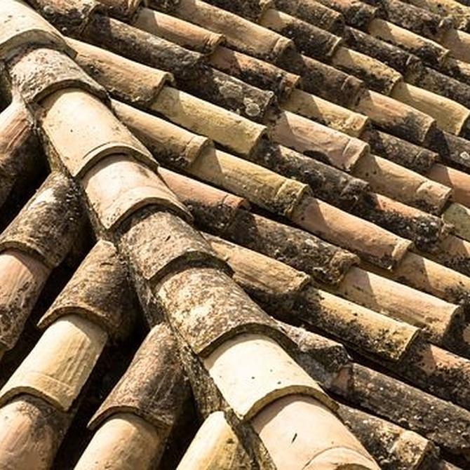 Siguiendo estas indicaciones descubrirás si tu tejado necesita una reforma