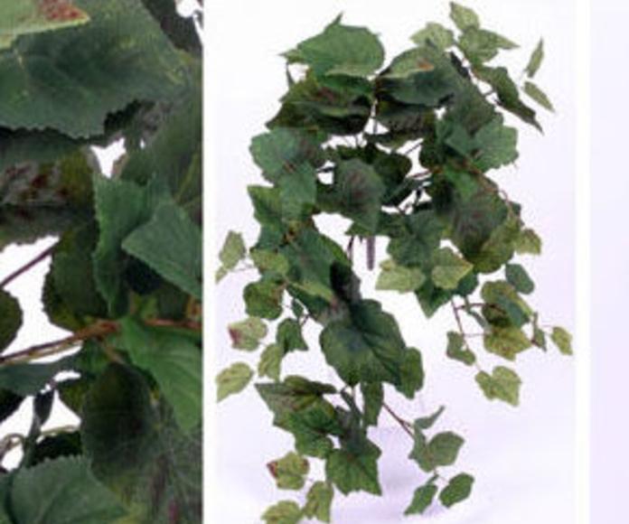 Colgante parra con 106 hojas