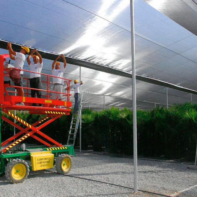 Invernaderos Multicapilla o Planos: Invernaderos de Invernaderos Campos